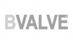 BVALVE